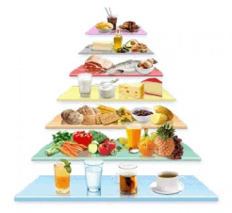 pyramide des besoins alimentaires